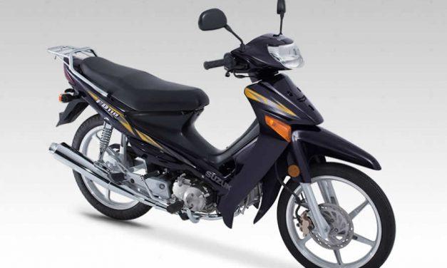 Manual de servicio Suzuki FD 110