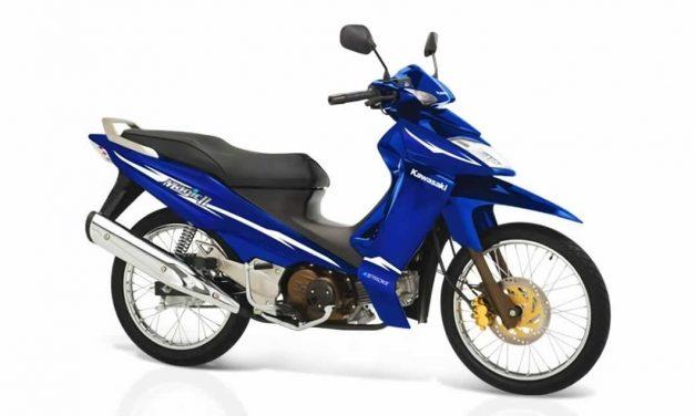 Manual de partes Kawasaki Magic 110